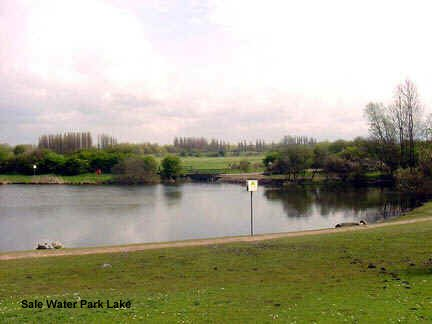 Sale Water Park Lake